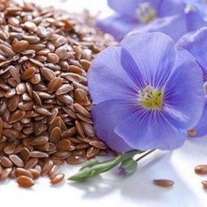Насіння льону для очищення кишечника: гідна альтернатива медичних препаратів