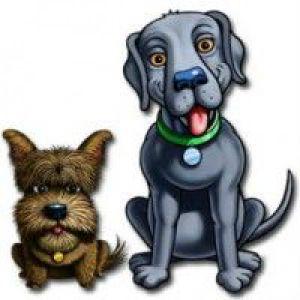 Гниють очі у собаки
