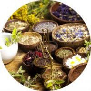 Лікування травами з протизапальною дією