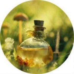 Застосування для волосся ефірного масла чайного дерева